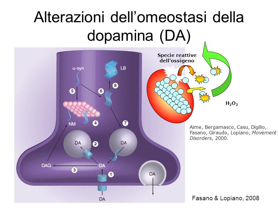 Alterazioni dellomeostasi della dopamina (DA) Fasano & Lopiano, 2008 H2O2H2O2 Specie reattive dellossigeno Aime, Bergamasco, Casu, Digilio, Fasano, Gi