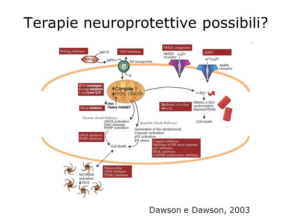 Terapie neuroprotettive possibili? Dawson e Dawson, 2003