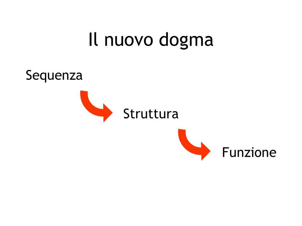 Il nuovo dogma Sequenza Struttura Funzione