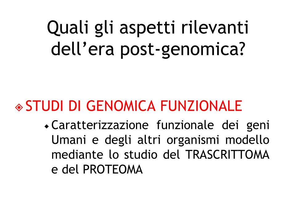 STUDI DI GENOMICA FUNZIONALE Caratterizzazione funzionale dei geni Umani e degli altri organismi modello mediante lo studio del TRASCRITTOMA e del PRO