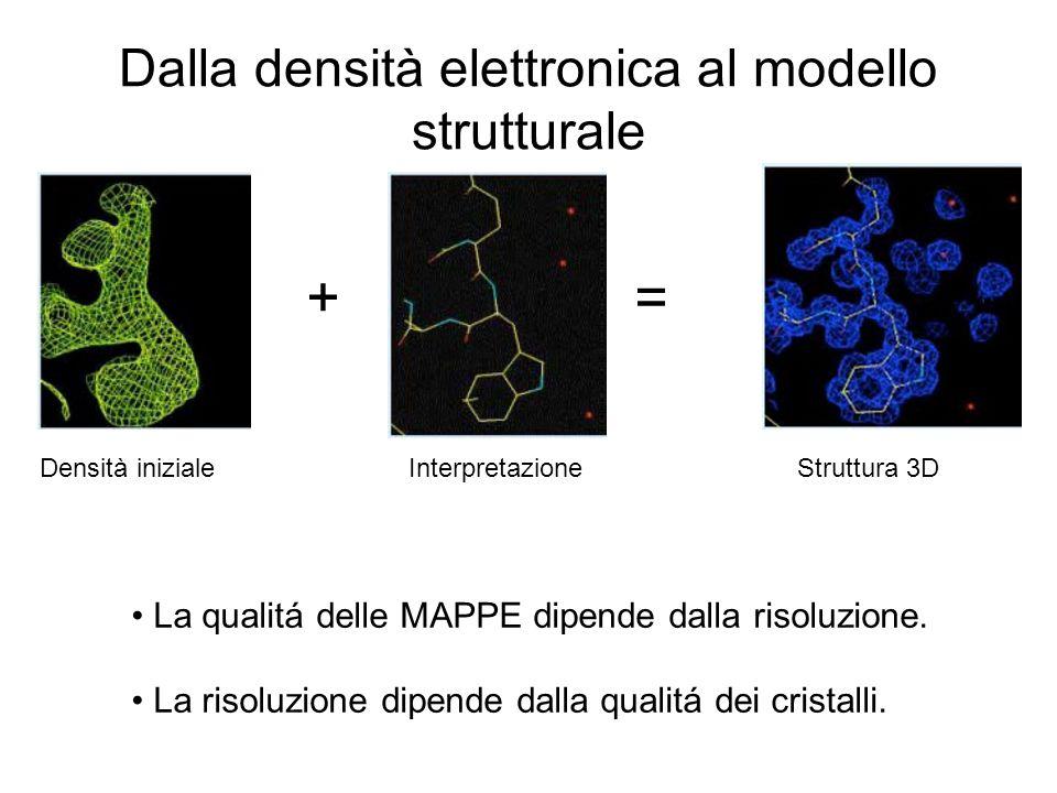 Dalla densità elettronica al modello strutturale + = Densità iniziale Interpretazione Struttura 3D La qualitá delle MAPPE dipende dalla risoluzione. L
