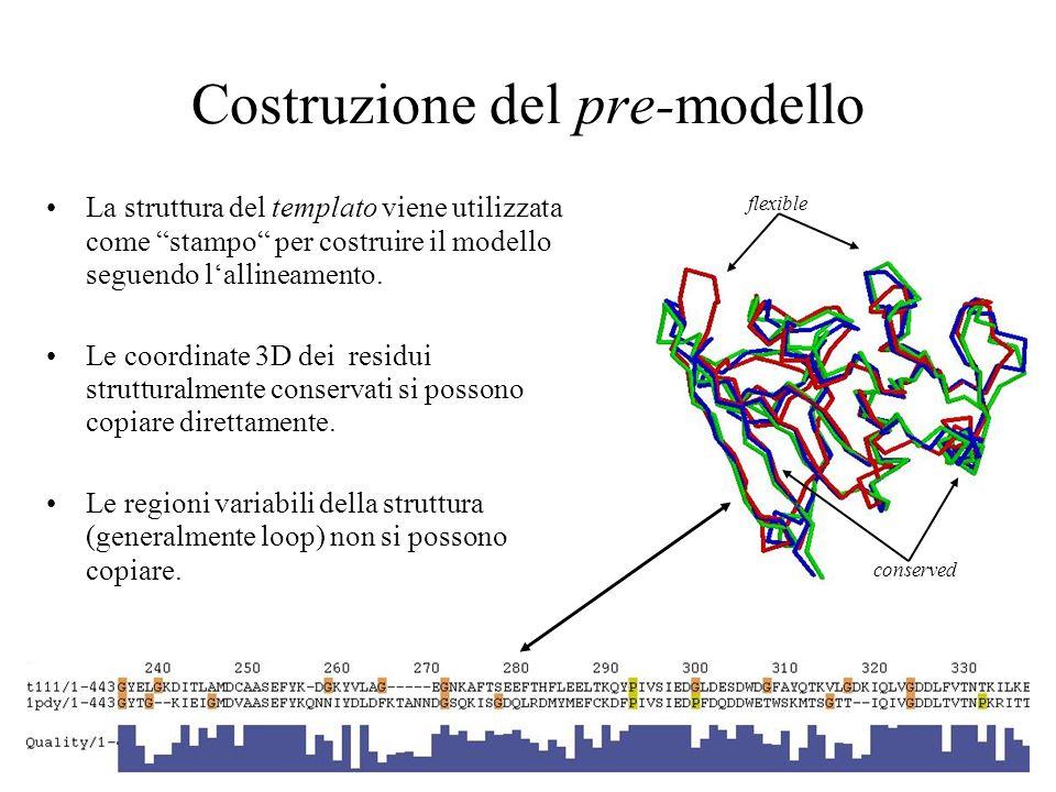 Costruzione del pre-modello La struttura del templato viene utilizzata come stampo per costruire il modello seguendo lallineamento. Le coordinate 3D d