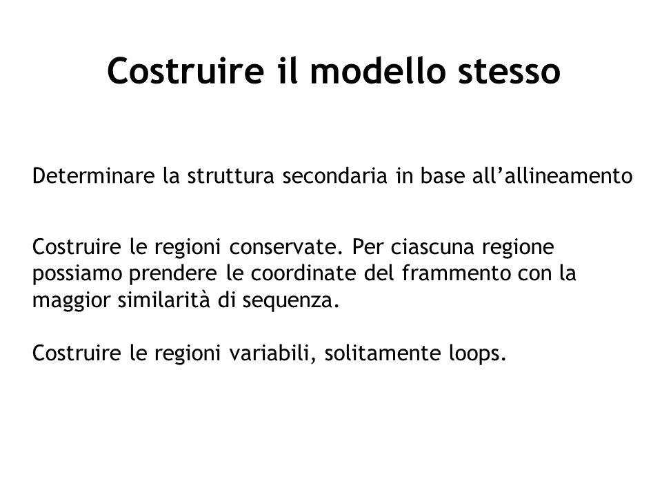 Costruire il modello stesso Determinare la struttura secondaria in base allallineamento Costruire le regioni conservate. Per ciascuna regione possiamo