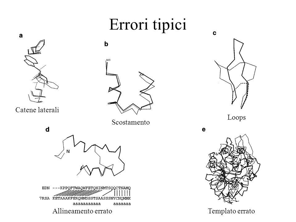 Catene laterali Scostamento Loops Allineamento erratoTemplato errato Errori tipici