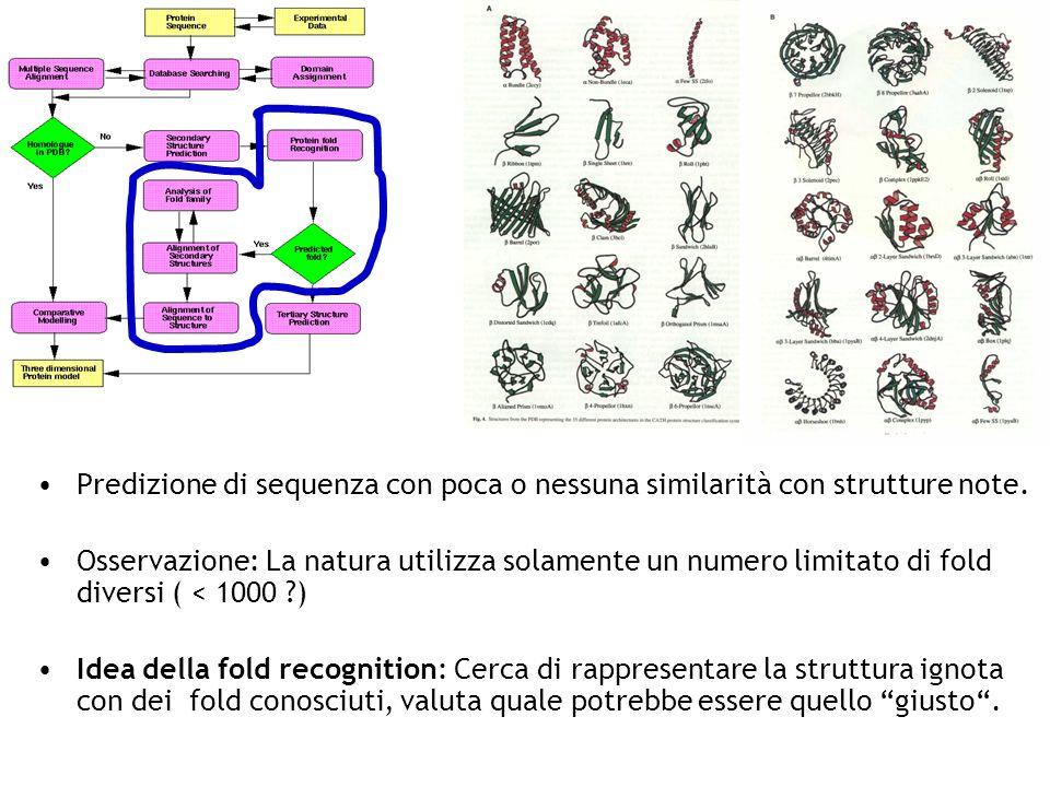 Predizione di sequenza con poca o nessuna similarità con strutture note. Osservazione: La natura utilizza solamente un numero limitato di fold diversi