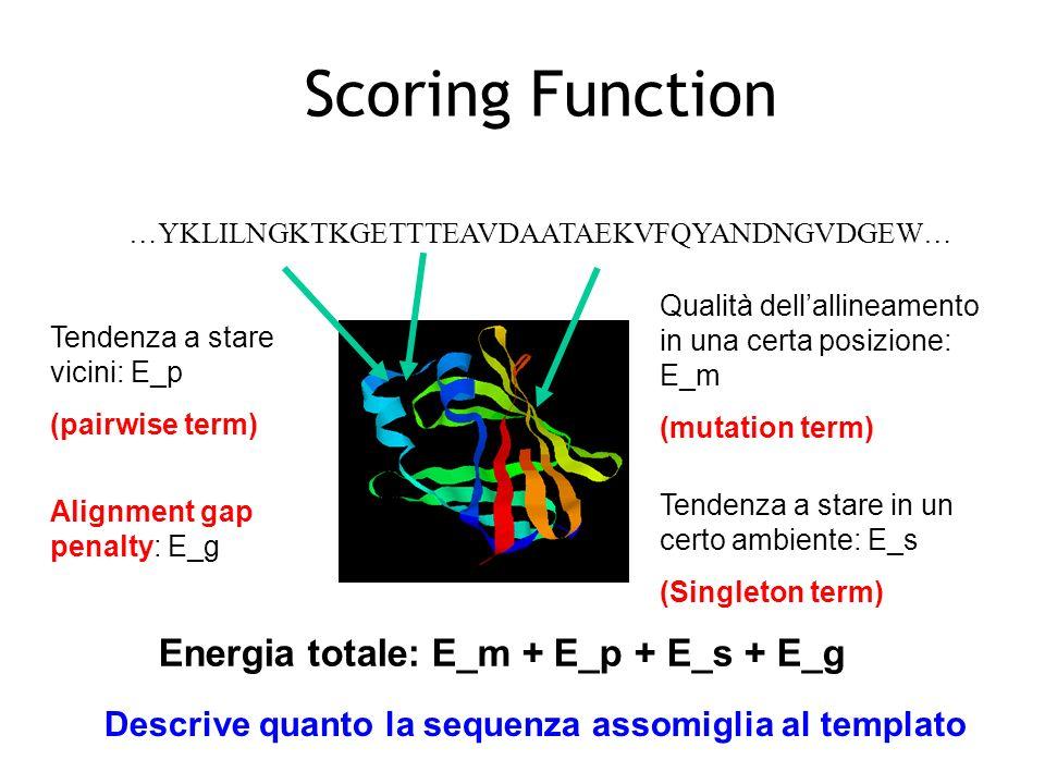 Scoring Function …YKLILNGKTKGETTTEAVDAATAEKVFQYANDNGVDGEW… Tendenza a stare in un certo ambiente: E_s (Singleton term) Tendenza a stare vicini: E_p (pairwise term) Alignment gap penalty: E_g Energia totale: E_m + E_p + E_s + E_g Descrive quanto la sequenza assomiglia al templato Qualità dellallineamento in una certa posizione: E_m (mutation term)