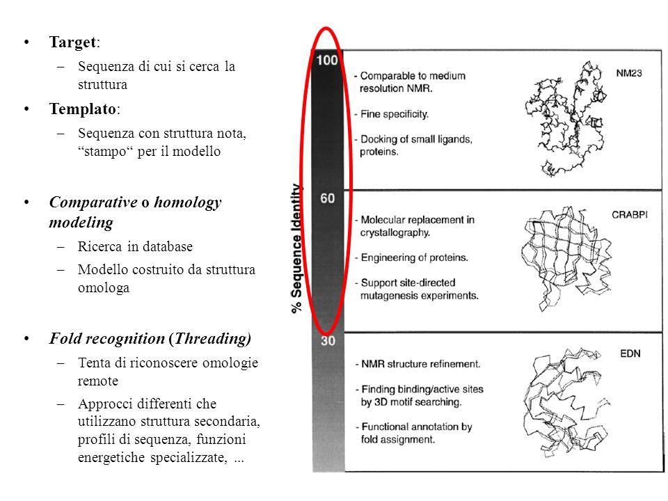 Target: –Sequenza di cui si cerca la struttura Templato: –Sequenza con struttura nota, stampo per il modello Comparative o homology modeling –Ricerca in database –Modello costruito da struttura omologa Fold recognition (Threading) –Tenta di riconoscere omologie remote –Approcci differenti che utilizzano struttura secondaria, profili di sequenza, funzioni energetiche specializzate,...