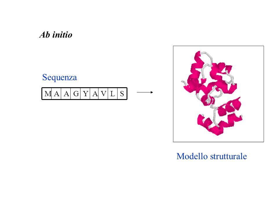 Ab initio Sequenza SLVAYGAAM Modello strutturale