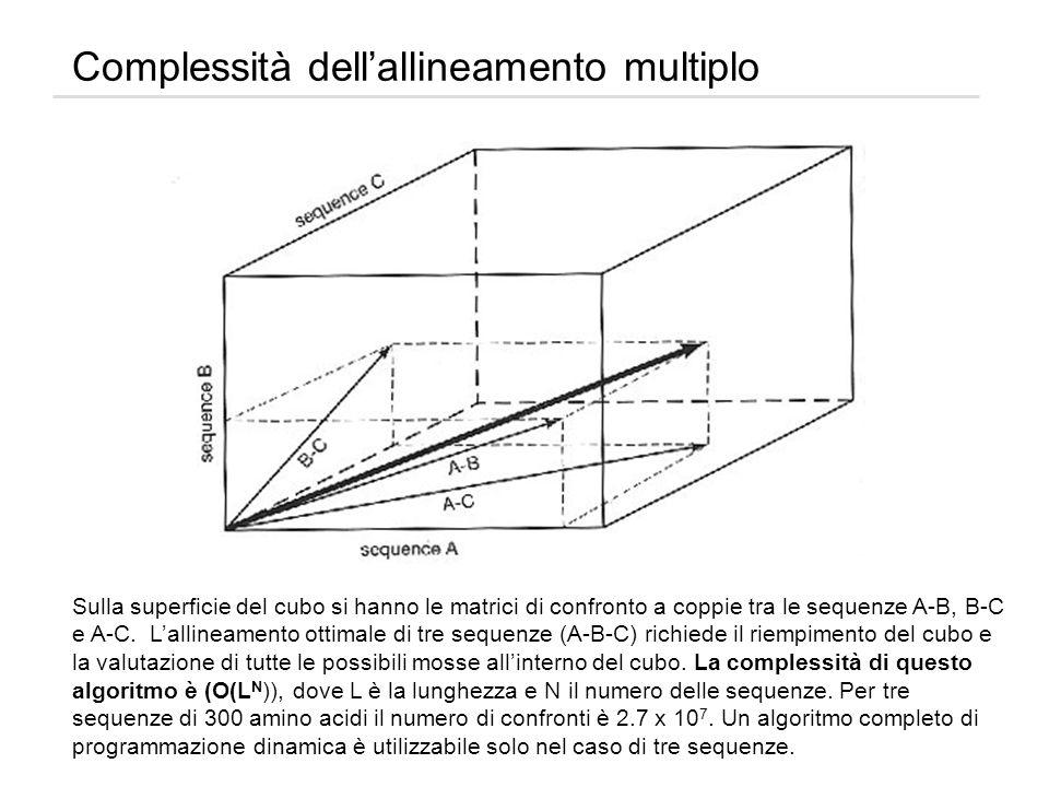 Complessità dellallineamento multiplo Sulla superficie del cubo si hanno le matrici di confronto a coppie tra le sequenze A-B, B-C e A-C. Lallineament