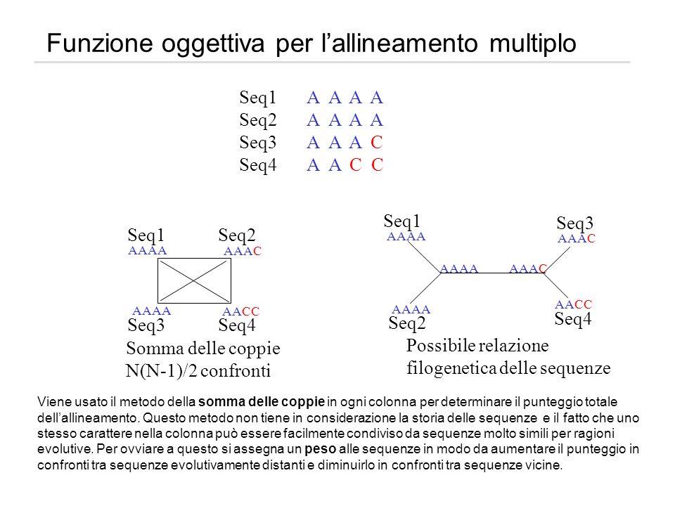 Funzione oggettiva per lallineamento multiplo Seq1A A A A Seq2A A A A Seq3A A A C Seq4A A C C Seq1 Seq2 Seq3 Seq4 Seq1 Seq2 Seq3 Seq4 Somma delle copp