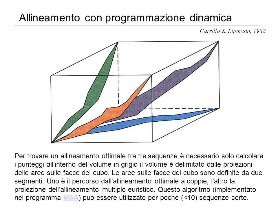 Allineamento con programmazione dinamica Carrillo & Lipmann, 1988 Per trovare un allineamento ottimale tra tre sequenze è necessario solo calcolare i