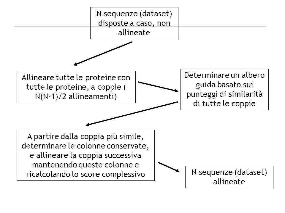 N sequenze (dataset) disposte a caso, non allineate Determinare un albero guida basato sui punteggi di similarità di tutte le coppie A partire dalla c