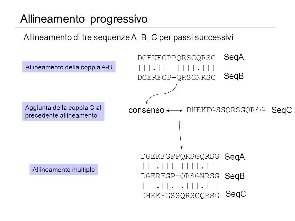 Allineamento progressivo consenso DHEKFGSSQRSGQRSG SeqC Aggiunta della coppia C al precedente allineamento DGEKFGPPQRSGQRSG |||.||| ||||.||| DGERFGP-Q