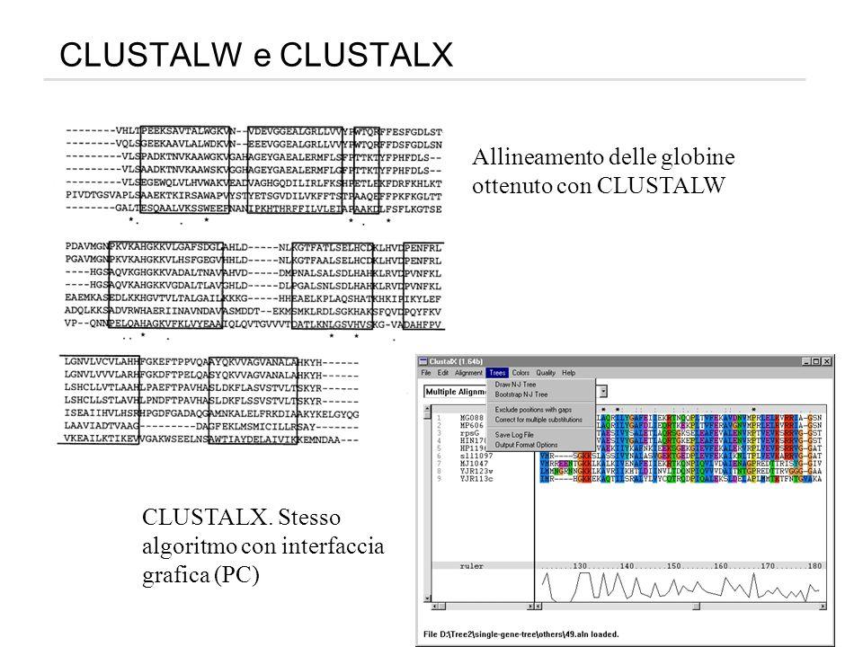 CLUSTALW e CLUSTALX Allineamento delle globine ottenuto con CLUSTALW CLUSTALX. Stesso algoritmo con interfaccia grafica (PC)