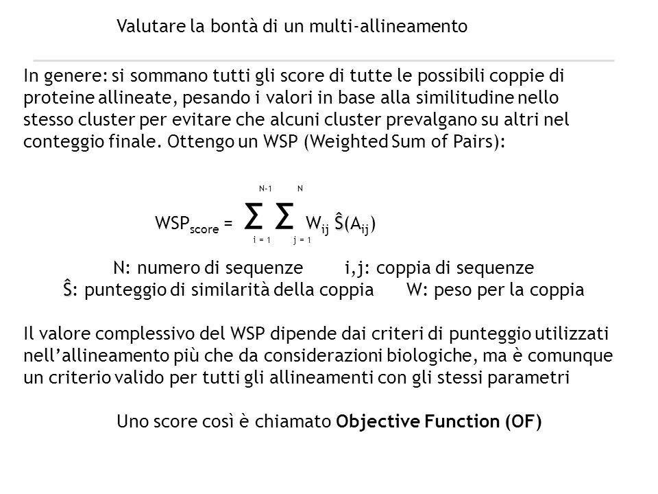 Valutare la bontà di un multi-allineamento In genere: si sommano tutti gli score di tutte le possibili coppie di proteine allineate, pesando i valori