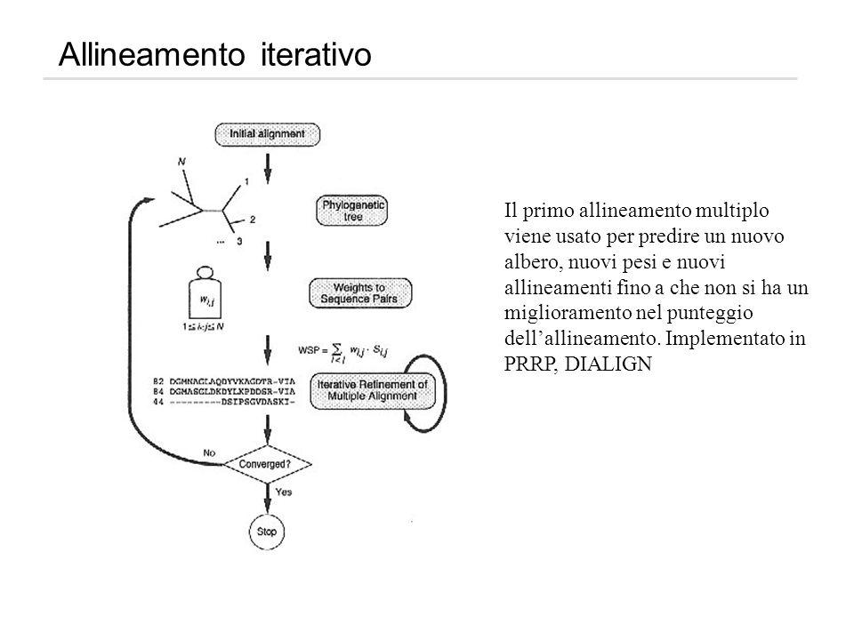 Allineamento iterativo Il primo allineamento multiplo viene usato per predire un nuovo albero, nuovi pesi e nuovi allineamenti fino a che non si ha un