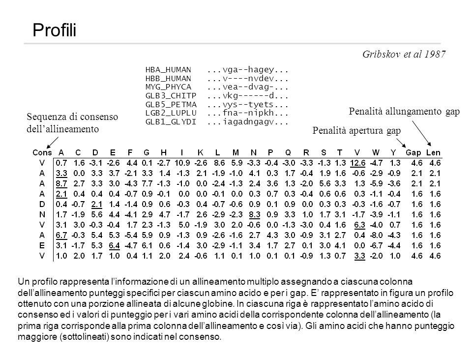 Profili Gribskov et al 1987 Sequenza di consenso dellallineamento Penalità apertura gap Penalità allungamento gap Un profilo rappresenta linformazione