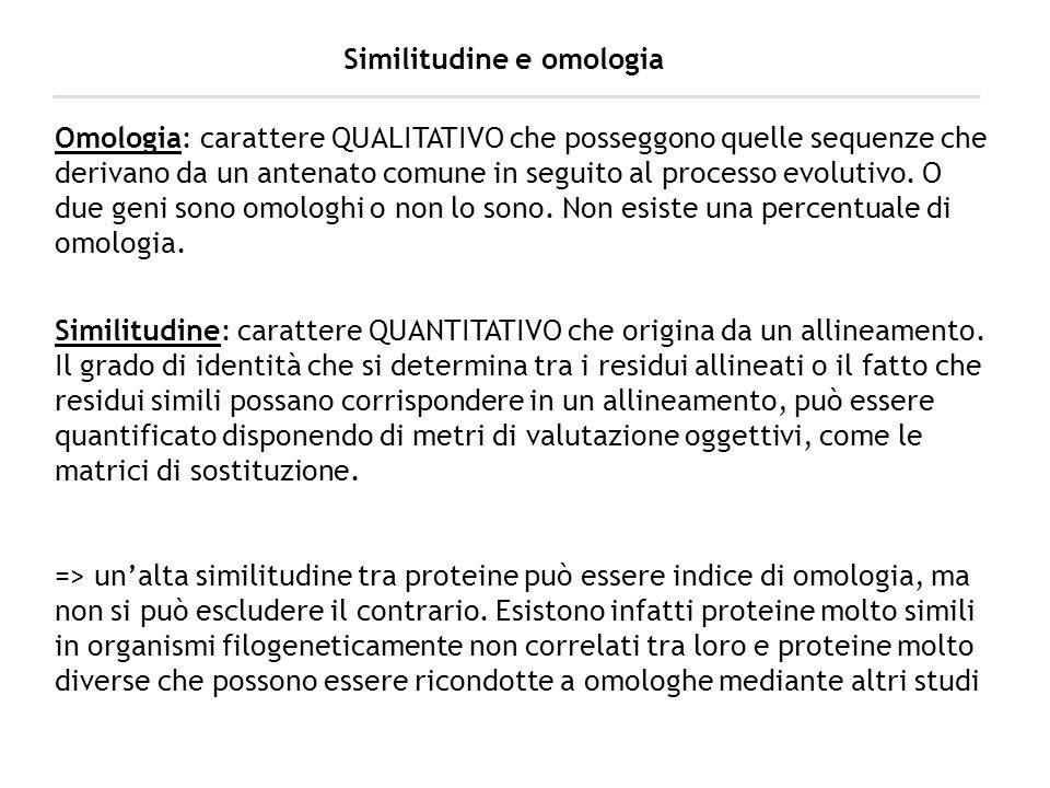 Similitudine e omologia Omologia: carattere QUALITATIVO che posseggono quelle sequenze che derivano da un antenato comune in seguito al processo evolu