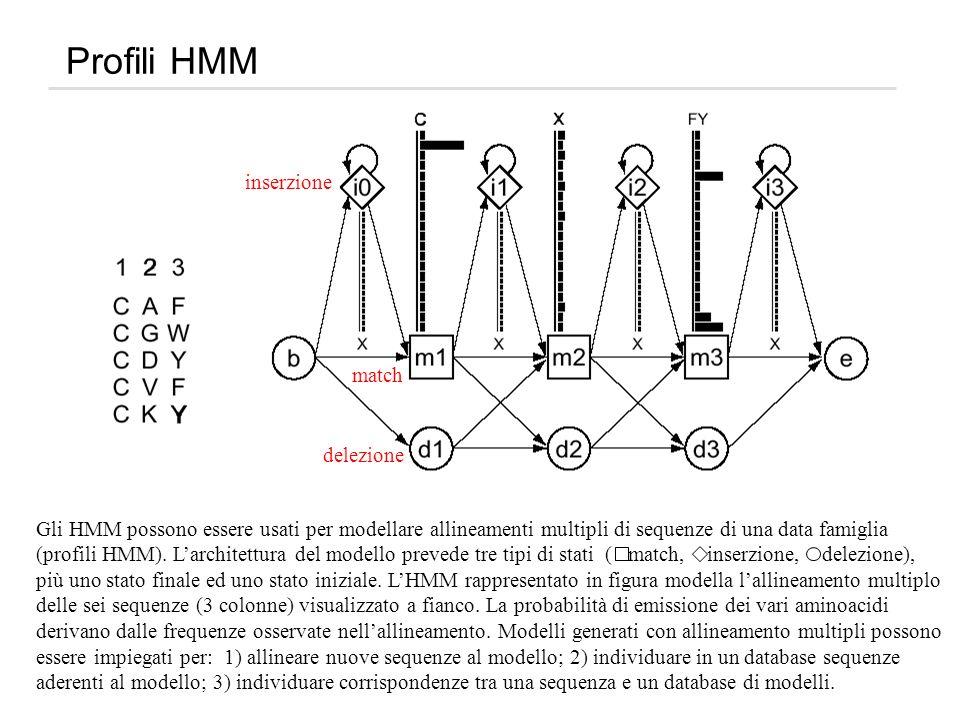 Profili HMM inserzione match delezione Gli HMM possono essere usati per modellare allineamenti multipli di sequenze di una data famiglia (profili HMM)