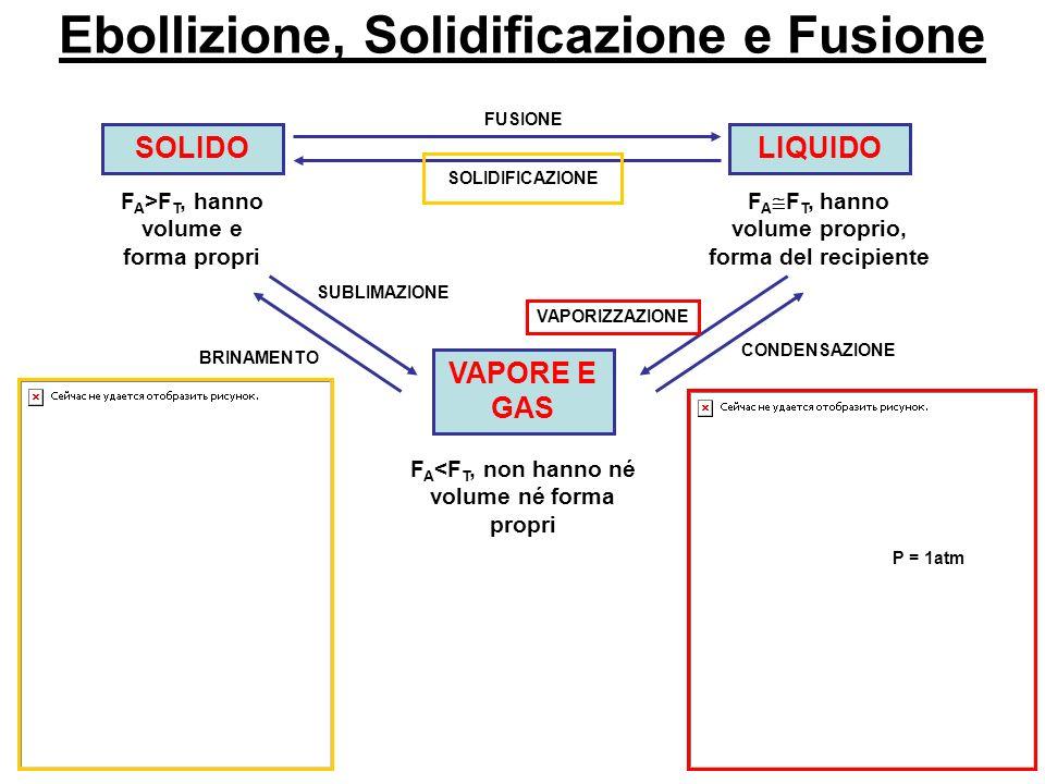 Ebollizione, Solidificazione e Fusione SOLIDO F A >F T, hanno volume e forma propri LIQUIDO F A F T, hanno volume proprio, forma del recipiente VAPORE E GAS F A <F T, non hanno né volume né forma propri FUSIONE SOLIDIFICAZIONE CONDENSAZIONE VAPORIZZAZIONE SUBLIMAZIONE BRINAMENTO P = 1atm