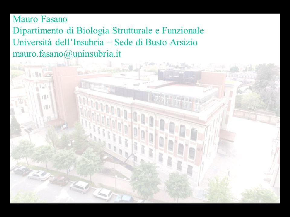 Mauro Fasano Dipartimento di Biologia Strutturale e Funzionale Università dellInsubria – Sede di Busto Arsizio mauro.fasano@uninsubria.it