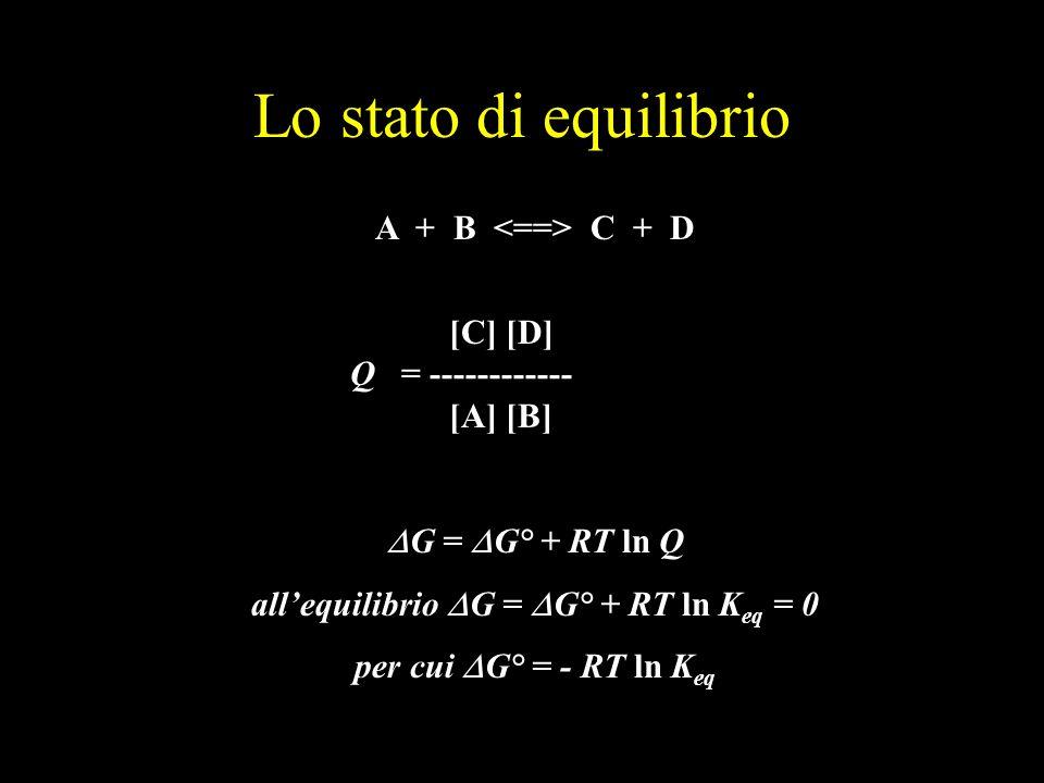 Lo stato di equilibrio A + B C + D [C] [D] Q = ------------ [A] [B] G = G° + RT ln Q allequilibrio G = G° + RT ln K eq = 0 per cui G° = - RT ln K eq