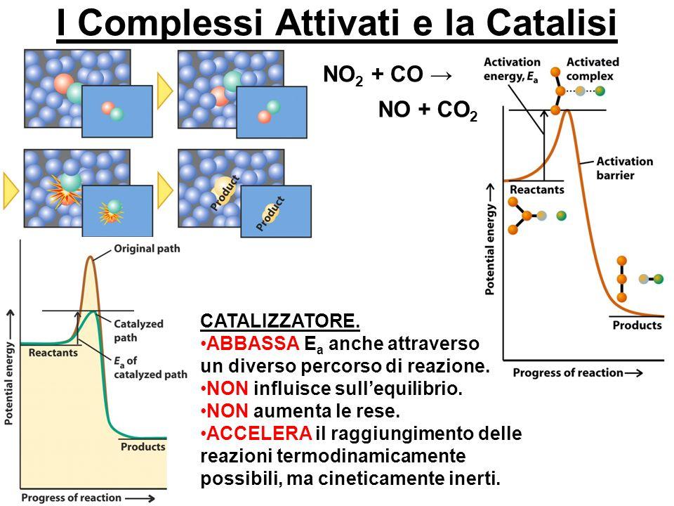 I Complessi Attivati e la Catalisi NO 2 + CO NO + CO 2 CATALIZZATORE. ABBASSA E a anche attraverso un diverso percorso di reazione. NON influisce sull