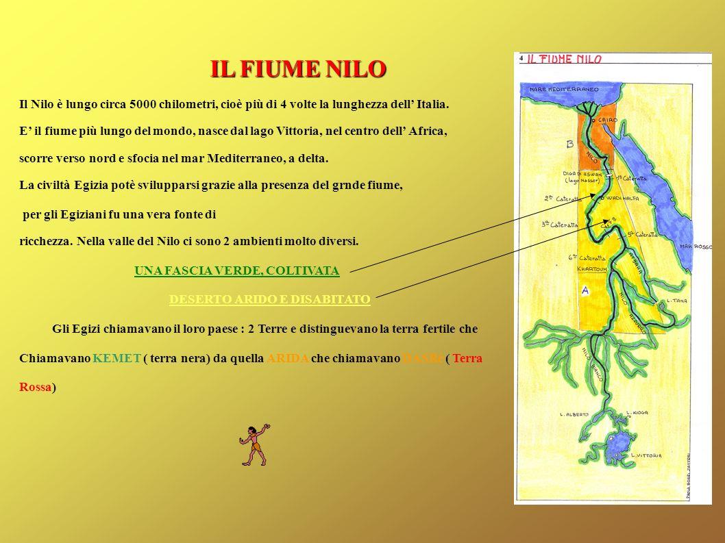 IL FIUME NILO Il Nilo è lungo circa 5000 chilometri, cioè più di 4 volte la lunghezza dell Italia. E il fiume più lungo del mondo, nasce dal lago Vitt
