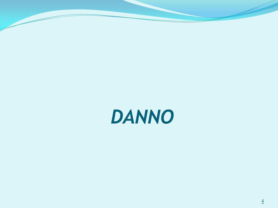 DANNO 4