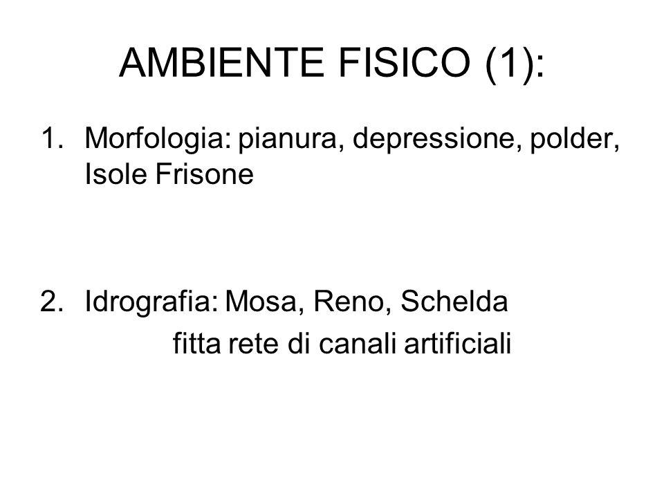 AMBIENTE FISICO (1): 1.Morfologia: pianura, depressione, polder, Isole Frisone 2.Idrografia: Mosa, Reno, Schelda fitta rete di canali artificiali