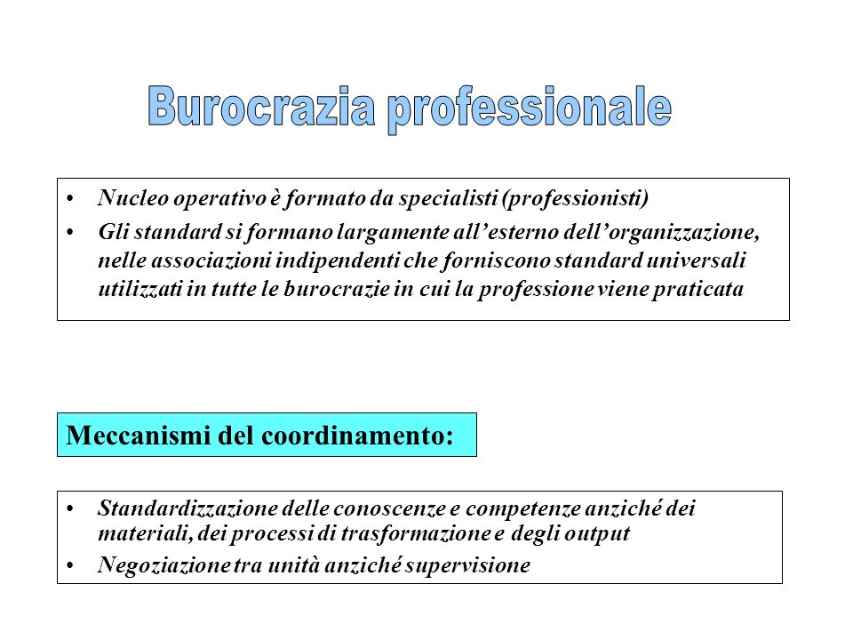 Nucleo operativo è formato da specialisti (professionisti) Gli standard si formano largamente allesterno dellorganizzazione, nelle associazioni indipe