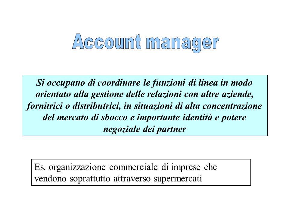 Si occupano di coordinare le funzioni di linea in modo orientato alla gestione delle relazioni con altre aziende, fornitrici o distributrici, in situa