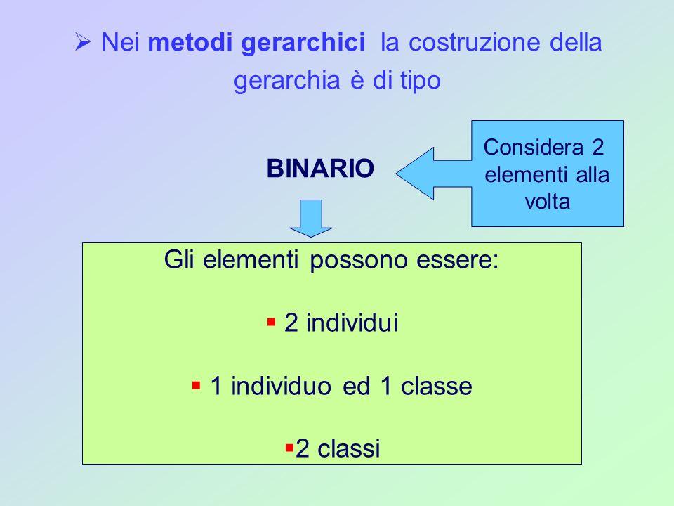 Nei metodi gerarchici la costruzione della gerarchia è di tipo BINARIO Considera 2 elementi alla volta Gli elementi possono essere: 2 individui 1 indi