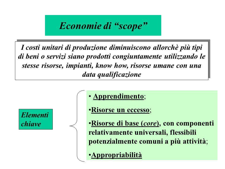 4 Economie di scope I costi unitari di produzione diminuiscono allorchè più tipi di beni o servizi siano prodotti congiuntamente utilizzando le stesse