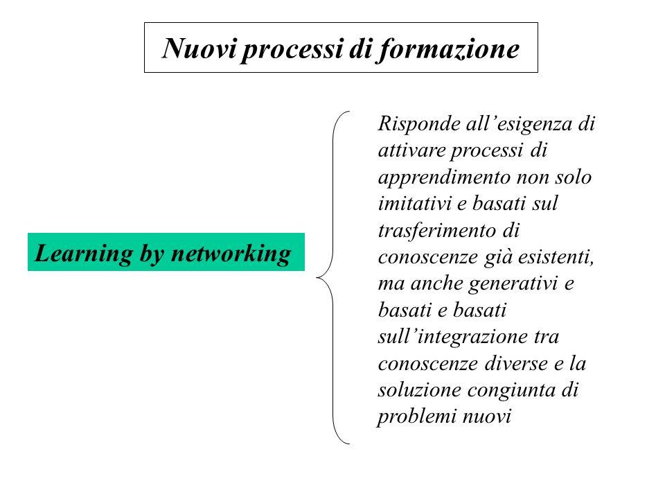 Nuovi processi di formazione Learning by networking Risponde allesigenza di attivare processi di apprendimento non solo imitativi e basati sul trasfer