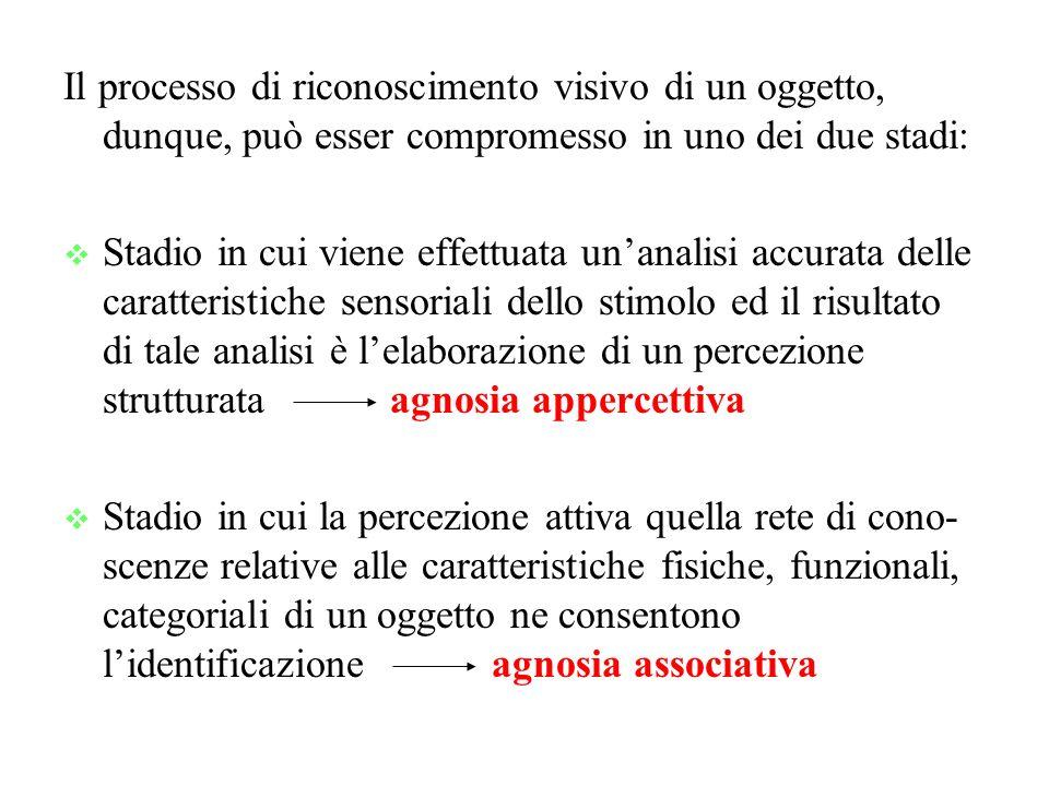 Il processo di riconoscimento visivo di un oggetto, dunque, può esser compromesso in uno dei due stadi: Stadio in cui viene effettuata unanalisi accurata delle caratteristiche sensoriali dello stimolo ed il risultato di tale analisi è lelaborazione di un percezione strutturata agnosia appercettiva Stadio in cui la percezione attiva quella rete di cono- scenze relative alle caratteristiche fisiche, funzionali, categoriali di un oggetto ne consentono lidentificazione agnosia associativa