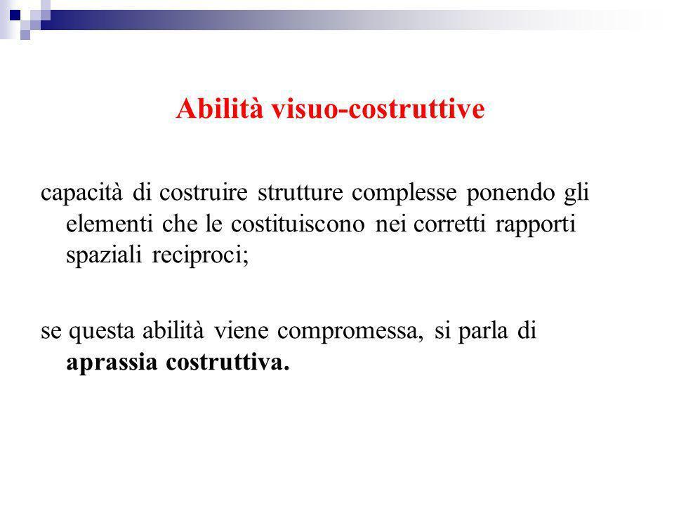 Abilità visuo-costruttive capacità di costruire strutture complesse ponendo gli elementi che le costituiscono nei corretti rapporti spaziali reciproci