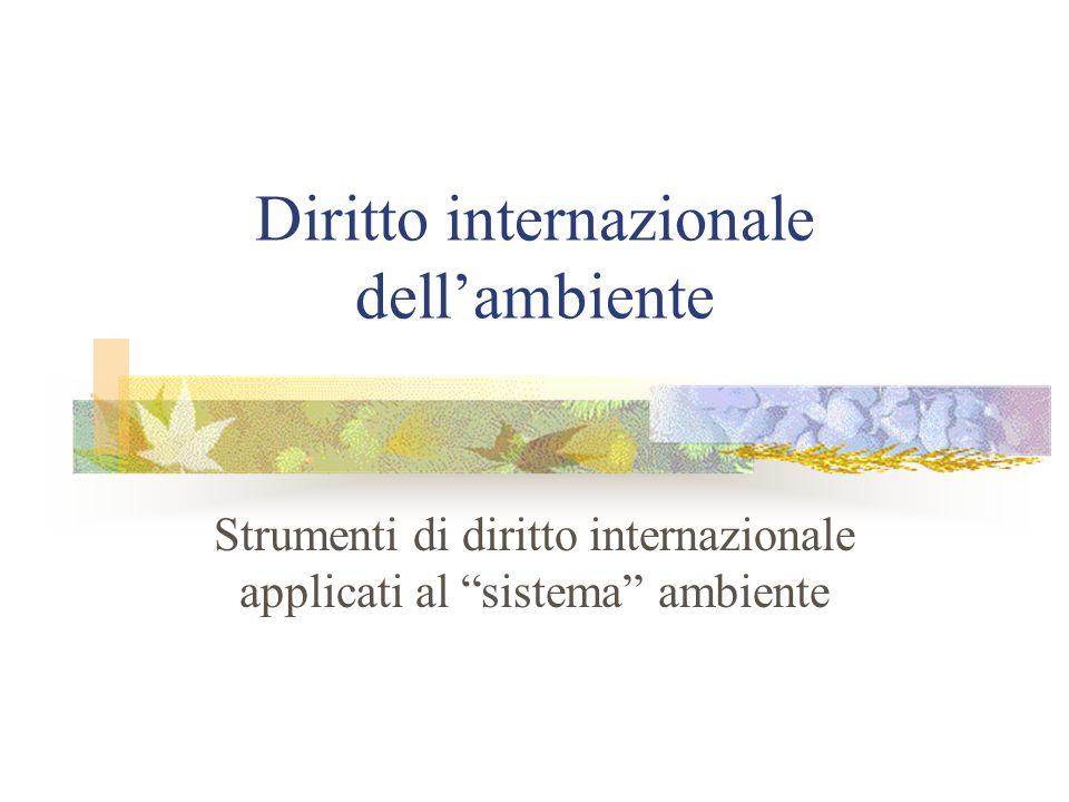 Diritto internazionale dellambiente Strumenti di diritto internazionale applicati al sistema ambiente