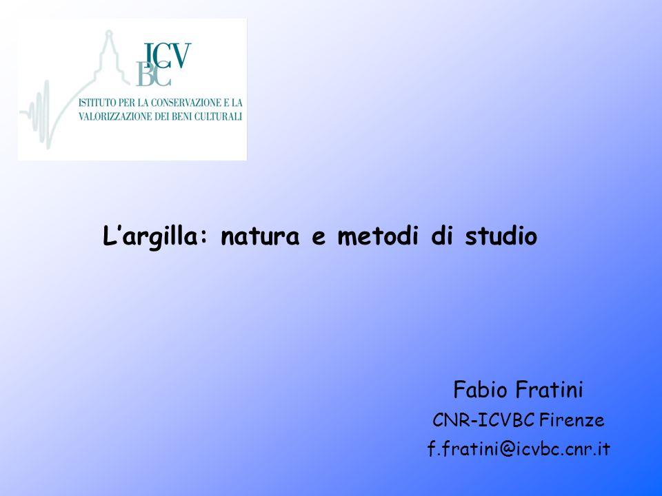 Largilla: natura e metodi di studio Fabio Fratini CNR-ICVBC Firenze f.fratini@icvbc.cnr.it