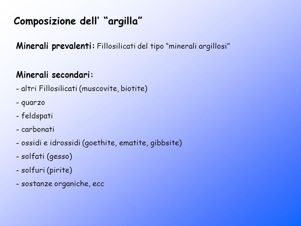 Composizione dell argilla Minerali prevalenti: Fillosilicati del tipo minerali argillosi Minerali secondari: - altri Fillosilicati (muscovite, biotite
