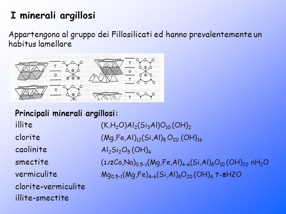 I minerali argillosi Appartengono al gruppo dei Fillosilicati ed hanno prevalentemente un habitus lamellare Principali minerali argillosi: illite (K,H