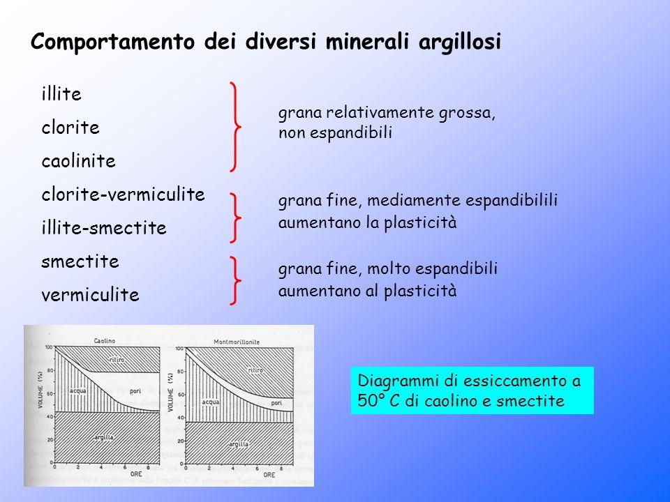 Comportamento dei diversi minerali argillosi illite clorite caolinite clorite-vermiculite illite-smectite smectite vermiculite grana relativamente gro