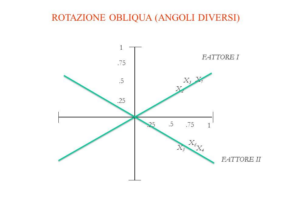 1 X5X5.5.25.75 1.25.5.75 X2X2 X1X1 X3X3 X6X6 X4X4 ROTAZIONE OBLIQUA (ANGOLI DIVERSI) FATTORE I FATTORE II