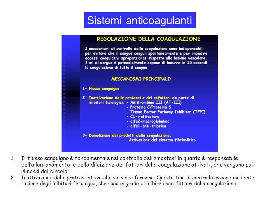 1.Il flusso sanguigno è fondamentale nel controllo dellemostasi in quanto è responsabile dellallontanamento e della diluizione dei fattori della coagu