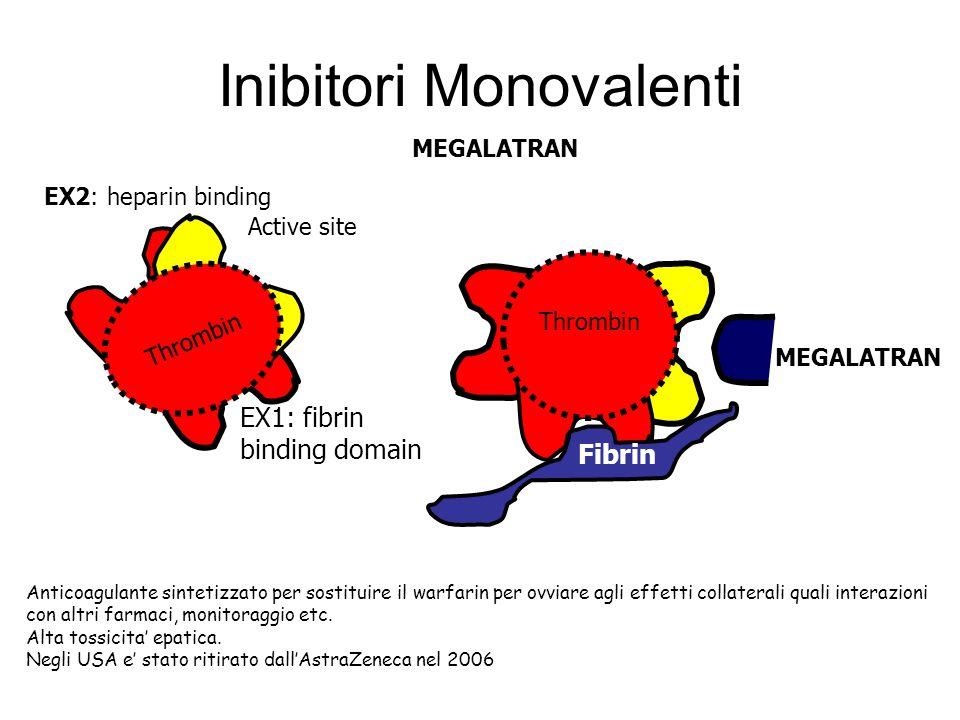 Inibitori Monovalenti Thrombin EX2: heparin binding EX1: fibrin binding domain Active site Thrombin Fibrin MEGALATRAN Anticoagulante sintetizzato per