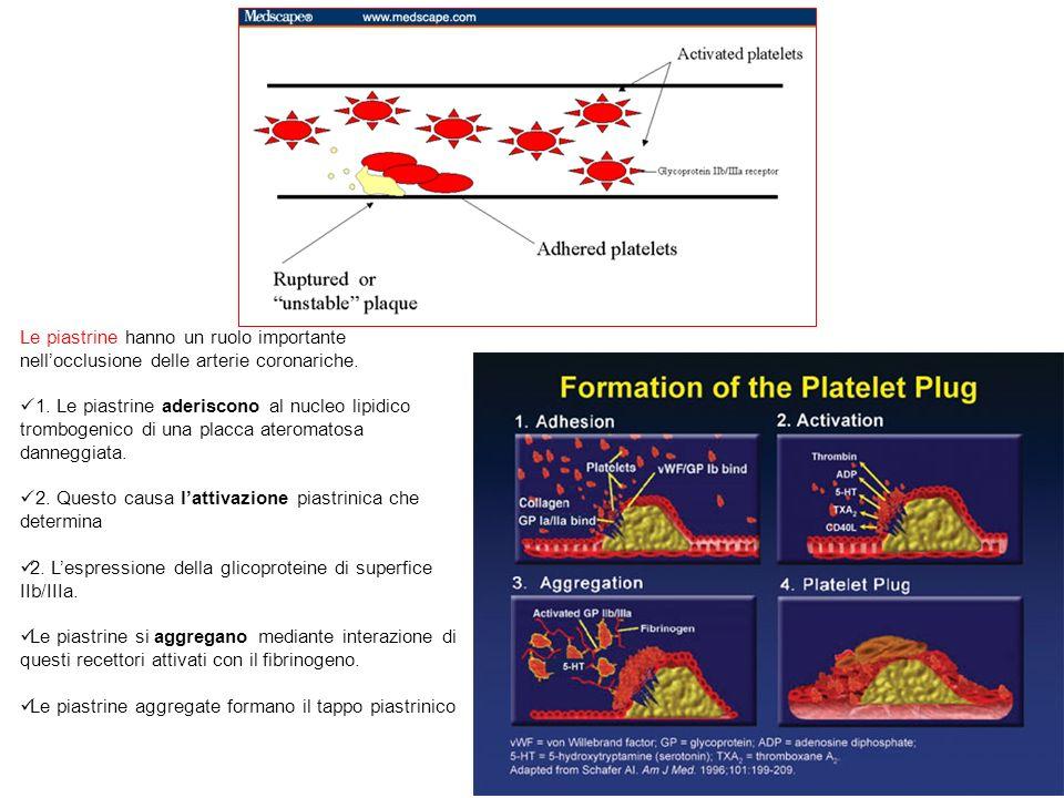 Farmacocinetica ASA Rapidamente assorbita per os dallo stomaco Picco ematico, t 1/2 di circa 30 min Ridotto volume di distribuzione Rapido metabolismo di primo passaggio