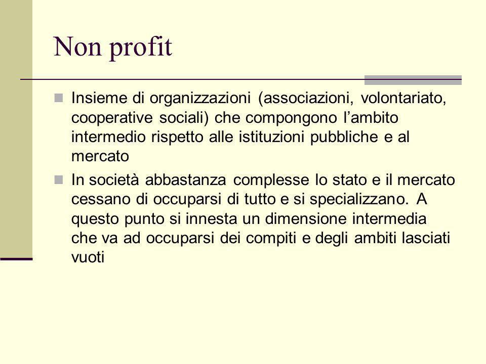 Non profit Insieme di organizzazioni (associazioni, volontariato, cooperative sociali) che compongono lambito intermedio rispetto alle istituzioni pub