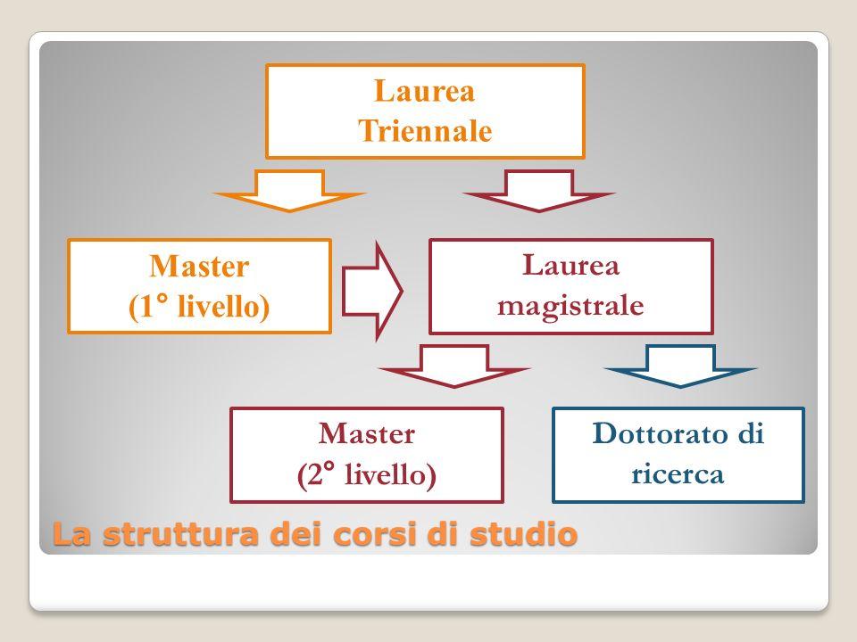 La struttura dei corsi di studio Laurea Triennale Master (1° livello) Laurea magistrale Master (2° livello) Dottorato di ricerca