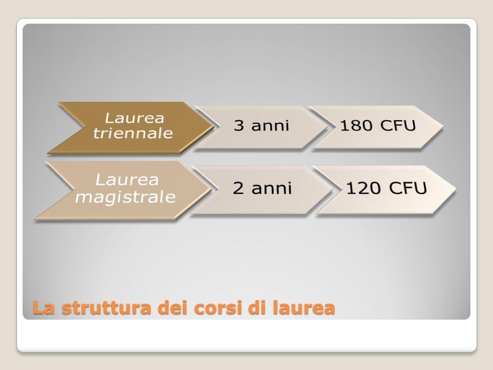 La struttura dei corsi di laurea