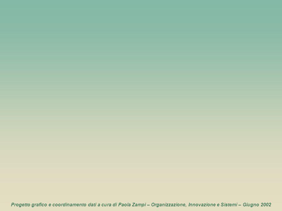 116 Progetto grafico e coordinamento dati a cura di Paola Zampi – Organizzazione, Innovazione e Sistemi – Giugno 2002
